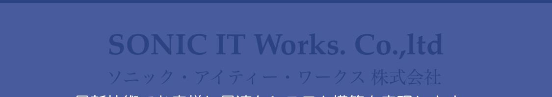 sonic-it-works