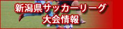 新潟県サッカーリーグ大会情報