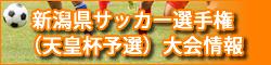 新潟県サッカー選手権(天皇杯予選)